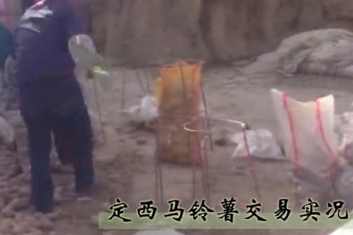 山窝窝里的金疙瘩——定西马铃薯交易实录 ()
