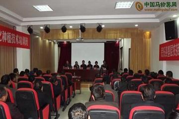 张掖市民乐县:马铃薯订单标准化种植技术培训班开班