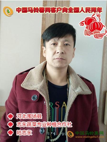 河北围场县志永蔬菜专业种植合作社陆志永