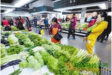 天津市:近期菜价回落明显 ()