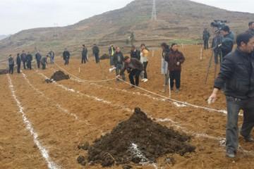 贵州威宁:春播马铃薯种植忙 ()
