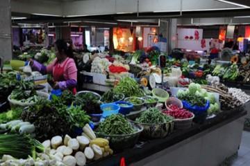 南京:时令蔬菜价格抬头 ()