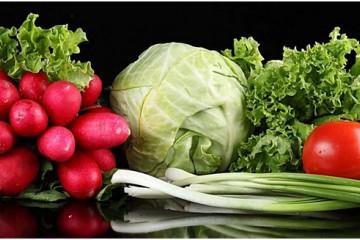 乌鲁木齐:蔬菜价格小幅回落 ()