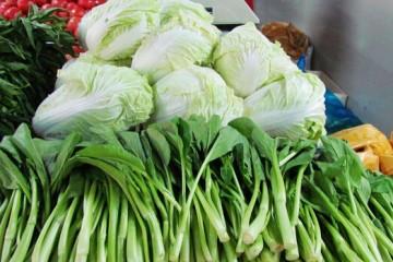 山东德州:叶类蔬菜价格下跌 仍无人问津 ()
