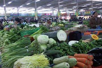 长沙:天气转暖蔬菜量大价低 ()