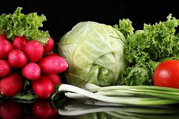 新疆阿勒泰:无公害蔬菜入市俏销 ()
