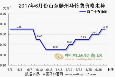 新薯大量上市 价格涨跌不一 ()