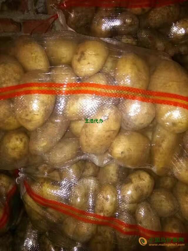 大量批土豆 ()
