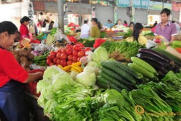 大连市:蔬菜供应充足 价格下调 ()