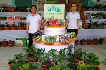 京津冀蔬菜产销对接 助农增收 ()