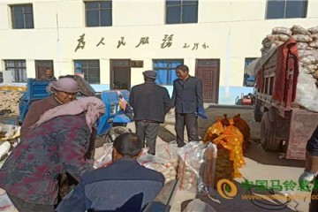 兰州:开展对口帮扶销售马铃薯活动 ()