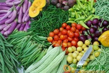 台州:蔬菜价格平稳运行