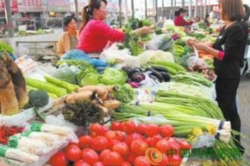 金乡:部分蔬菜价格上涨 ()