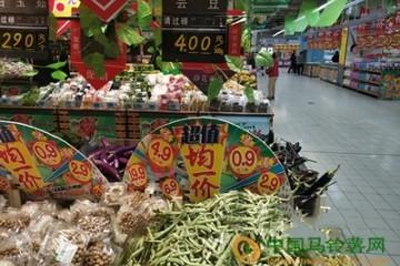 济南:菜价偏高位运行