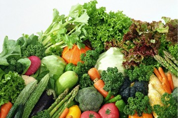 郑州蔬菜价格下跌明显