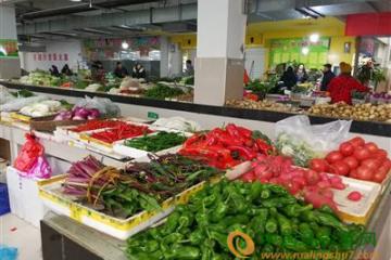 湖南:蔬菜整体价格出现下滑 ()