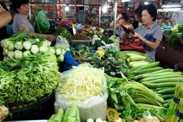 持续高温 上海蔬菜未见涨价 ()