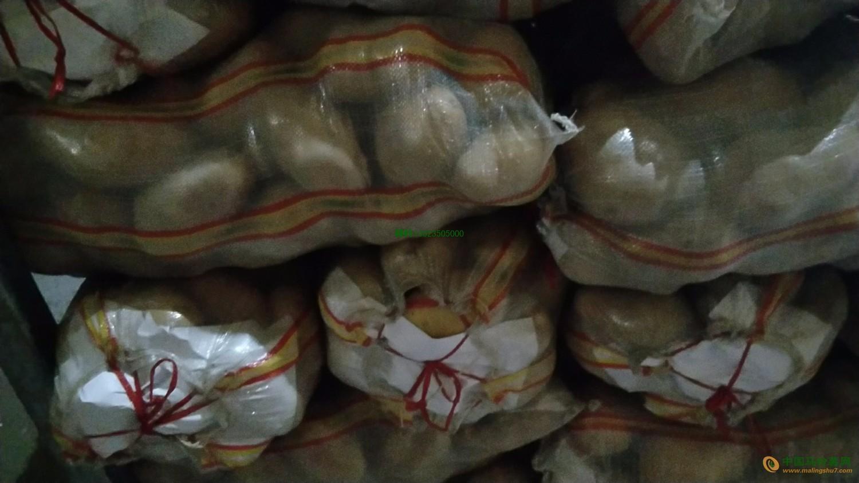 本人大量求购菏兰十五土豆13023505000 ()