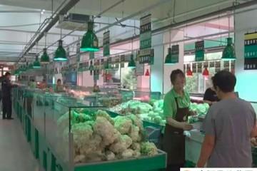 新民市:绿叶菜价格涨幅明显 ()