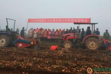 云南昭通:推动马铃薯收获机械化 ()