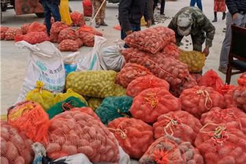 新疆喀什:高原土豆增产又增收 ()