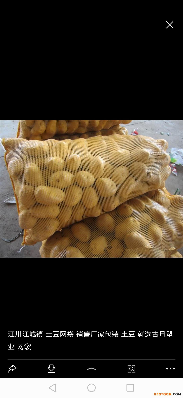 大量收购荷兰十五种薯 ()
