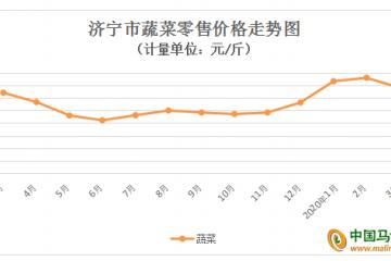 济宁:菜价季节性下滑 鸡蛋价格持续下滑
