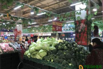 重庆:蔬菜价格继续下跌