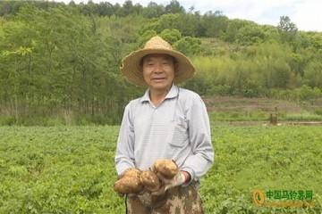 """云南嵩明:村民的""""致富果""""—马铃薯"""
