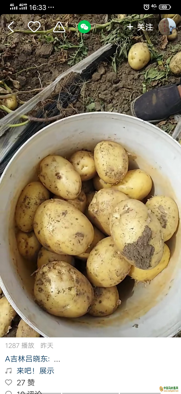 本人有大量尤金土豆,还有新佳荷兰系列出售 ()