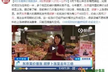 阴雨致日本东京菜价大幅上涨