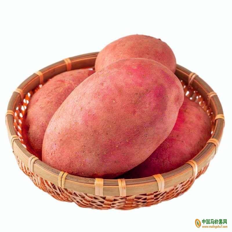 求购云南红皮土豆 ()