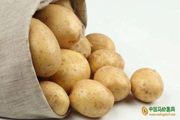 滕州市:马铃薯目标价格保险让薯农真正受益 ()