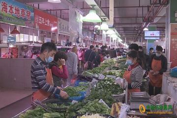 徐汇:菜价呈下跌走势