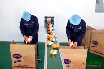 威宁:年产薯片2000余吨