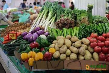 沈阳:蔬菜价格以涨为主