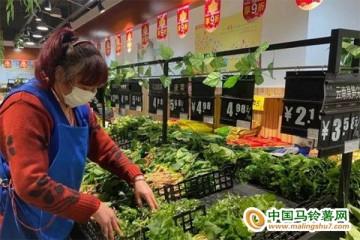 菏泽:菜价继续小幅下降 ()