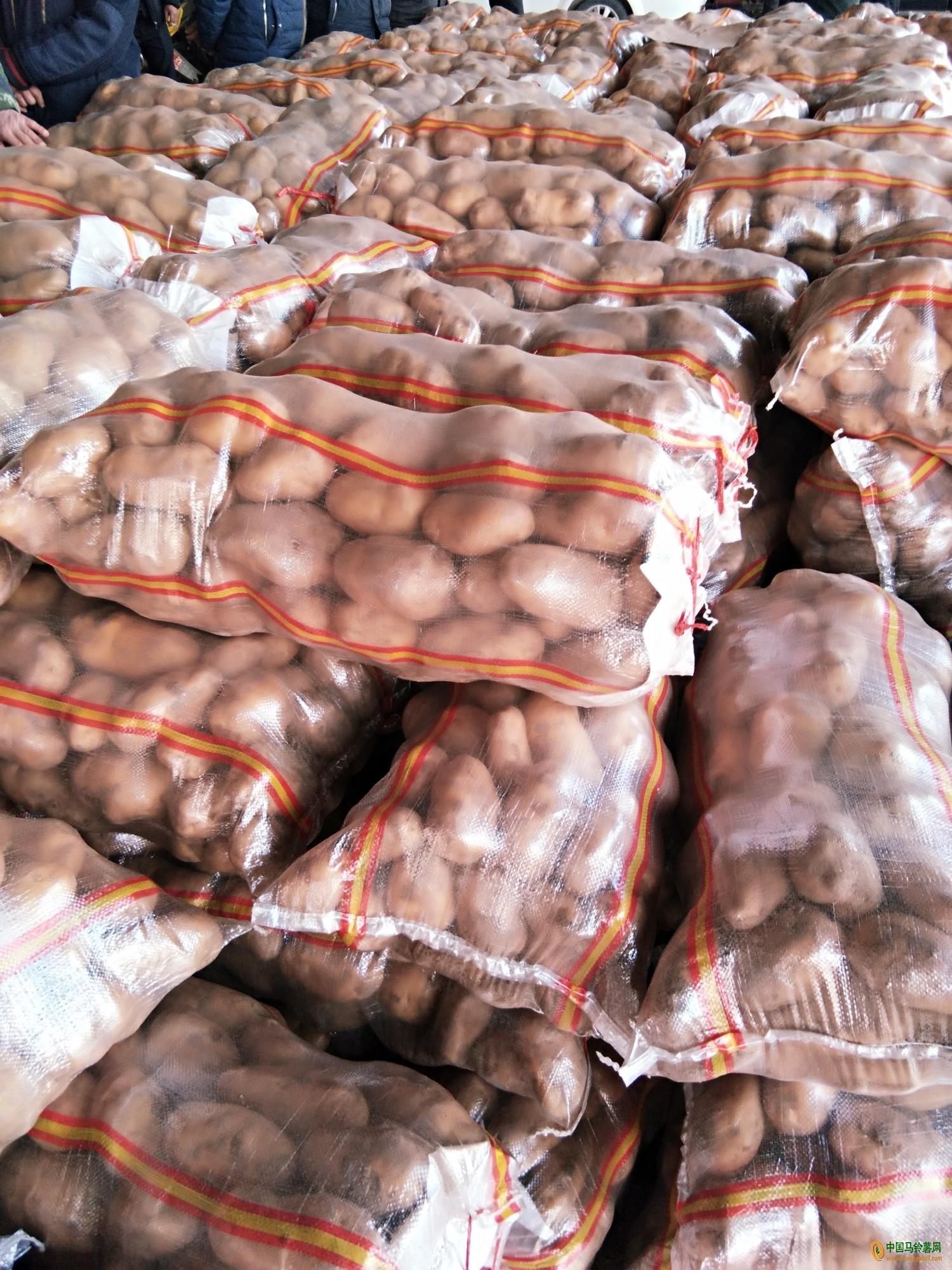 出售箱装袋装精加工土豆::联系电话:13561741399 ()