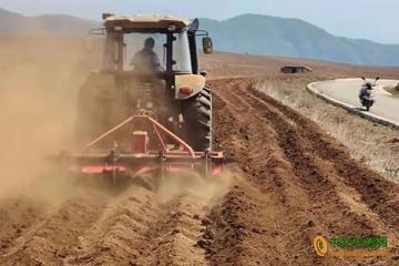 伍寨乡:采取马铃薯机械化种植模式