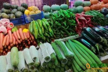 陕西:蔬菜价格连续两周上涨