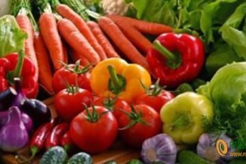 烟台:蔬菜价格小幅下降 ()