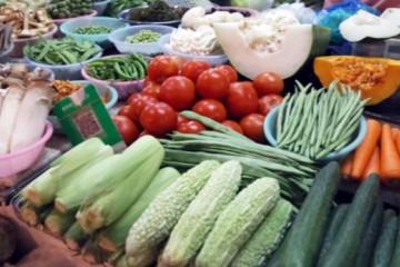 益阳:蔬菜价格上涨 ()