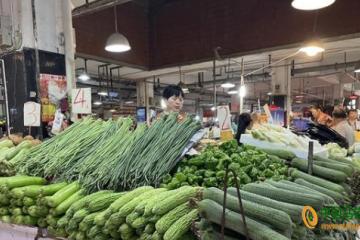 重庆:蔬菜价格以跌为主 ()