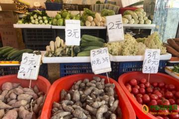 温州:蔬菜扎堆上市 价格下降 ()
